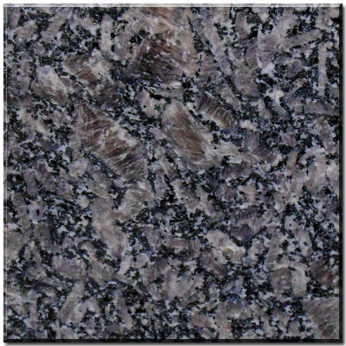 Royal Coffee Granite Granite Tiles Natural Stone